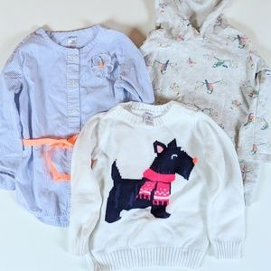 Bundle of 3 Carter's long sleeved tops size 3t